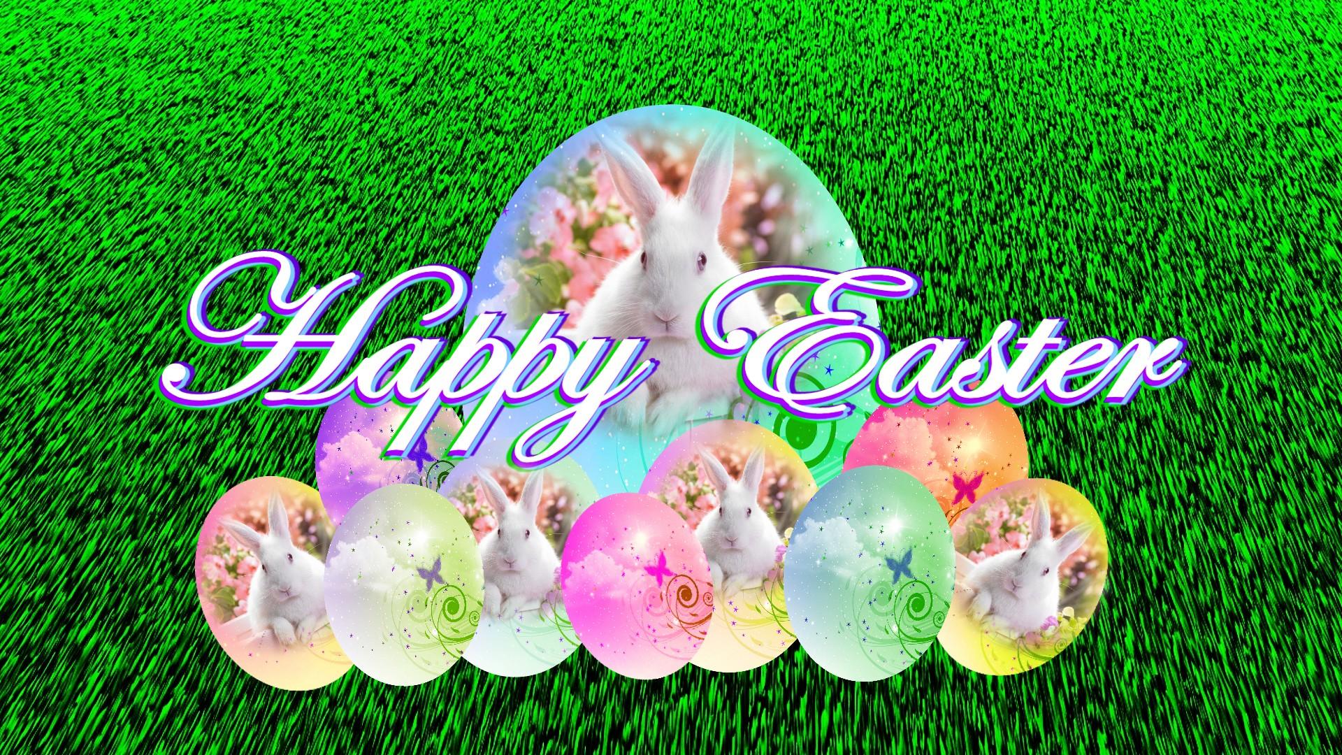 eggs hd holiday and celebration wallpapers wallpapers smajliji com