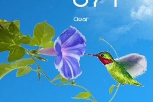 Animated Hummingbird Weather for Rainmeter by Ionstorm_01