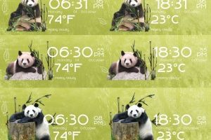 Pandas Time Date and Weather for Rainmeter by Ionstorm_01