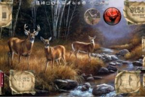 Outdoor Living - Deer - Desktop for Rainmeter v1.1 by Ionstorm_01