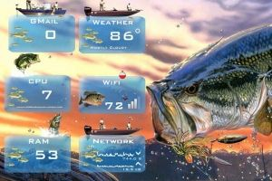 Outdoor Living - Fishing - for Rainmeter by Ionstorm_01